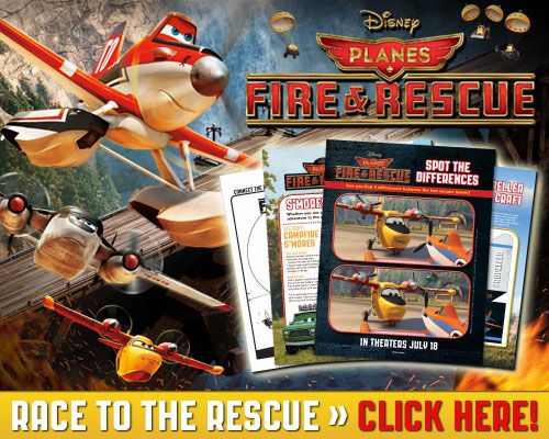 Disney Planes Fire And Rescue Room Decor