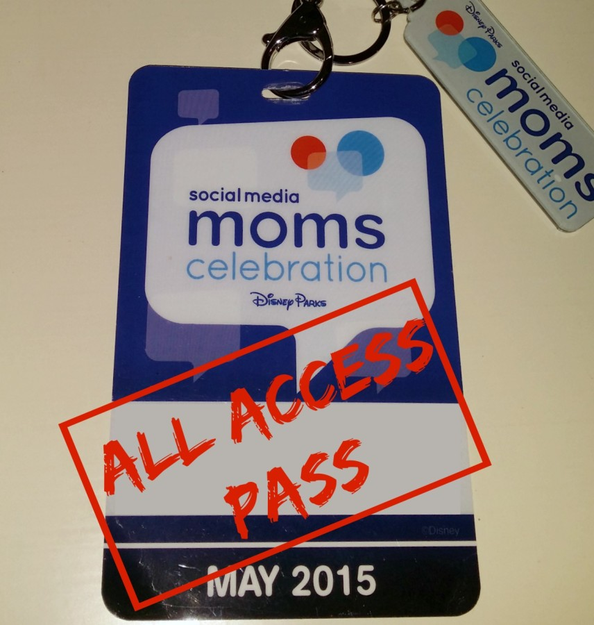 disney smmc 2015 pass