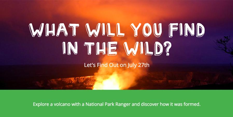 camp google nature week