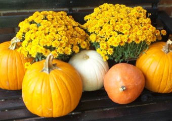 Super Simple Fall Decorations