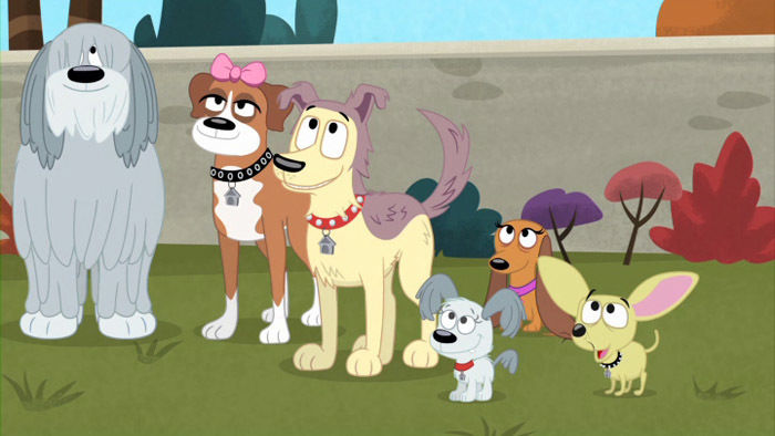 pound puppies showstopping pups