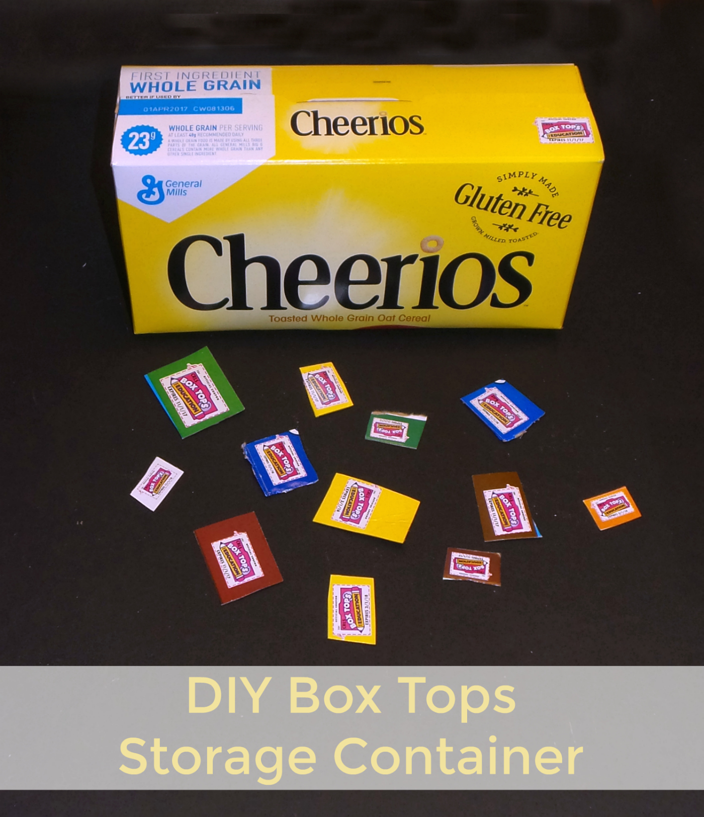 box top storage container pin
