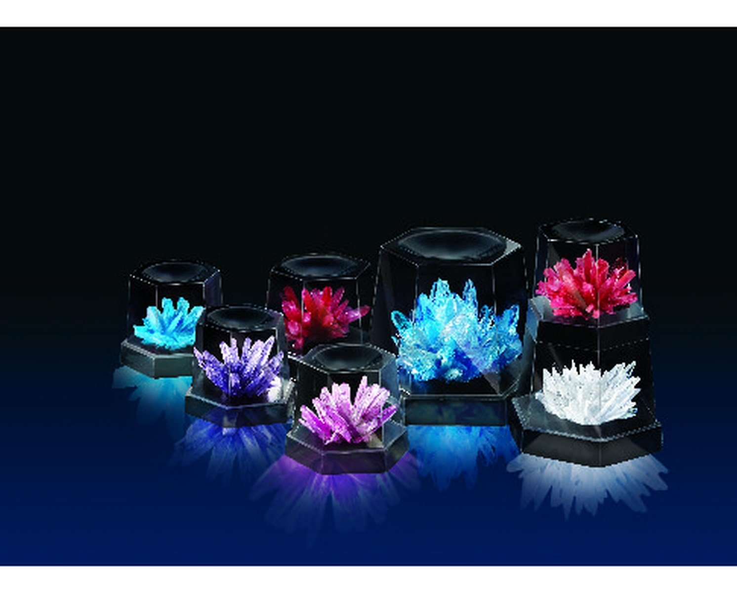 crystal growing kit fun